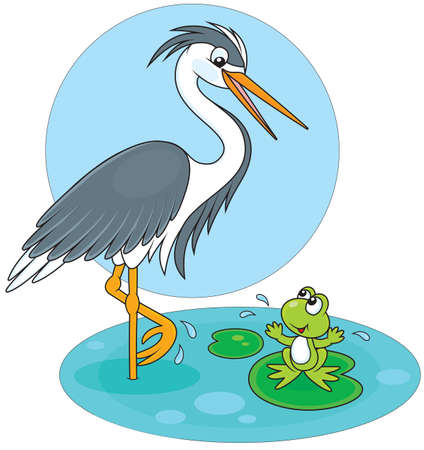 Heron and frog Stock Vector - 29465198