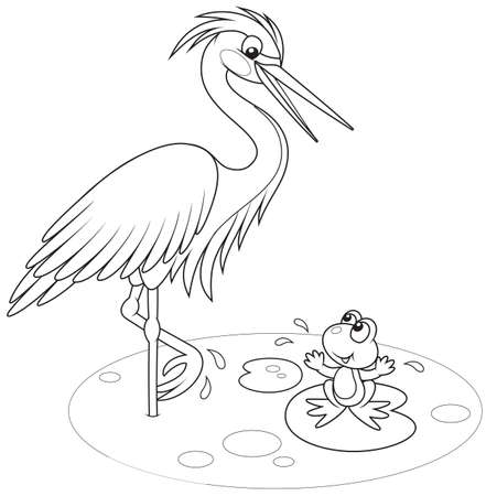 Heron and frog Vector