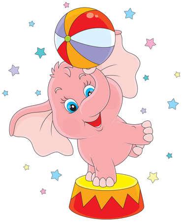 circus olifant met een bal