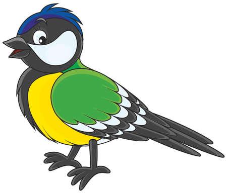 Tomtit  Ilustración de vector