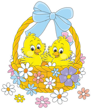 Little yellow chickens in an Easter basket decorated with a bow and flowers