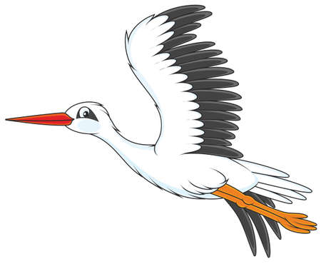 blanc cigogne volant