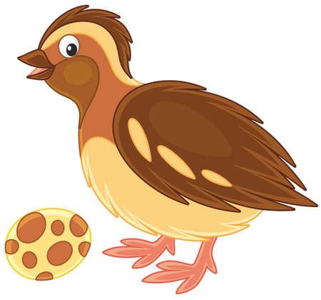 kleine bruine kwartels en de gevlekte ei Stock Illustratie