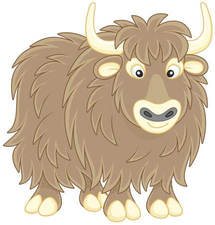 Big brown yak