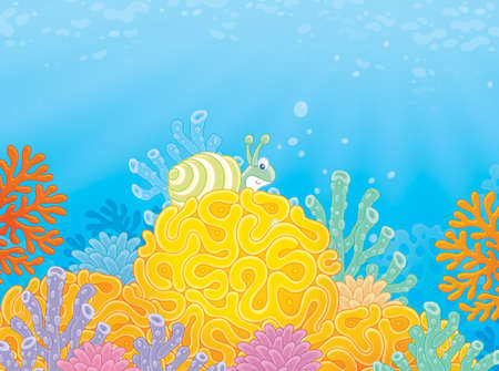Sea snail and corals