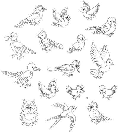 Set von Vögeln
