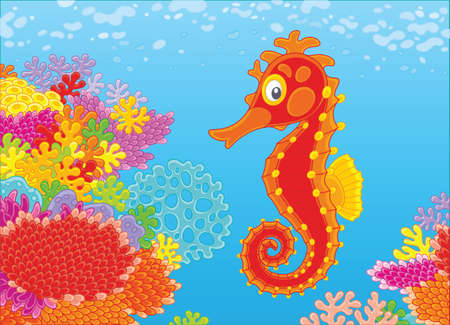 Seahorse and corals Vector illustration. 일러스트
