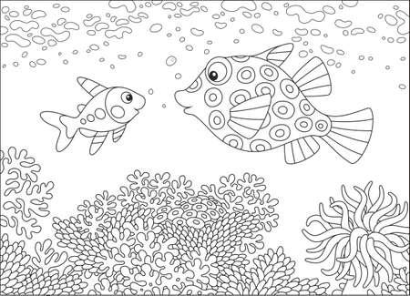 X-ray fish and box fish illustration.