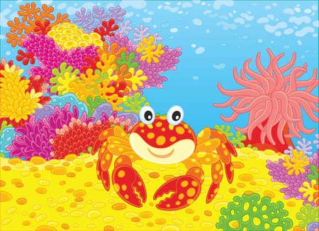 게와 산호. 일러스트