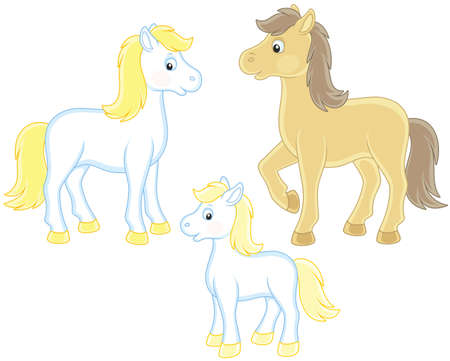 Family of a horse, a little foal and a courser illustration. Illustration