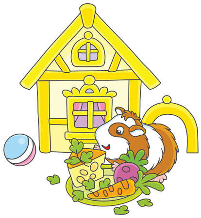 Cavy eating cheese, carrot and beet in front of a house Illustration
