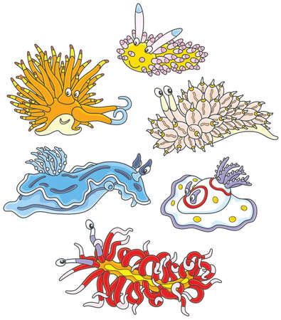 Collection of funny and colorful sea monsters