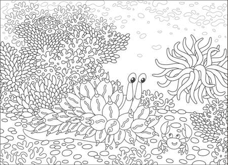 Mollusk and Crab among corals for your design Illustration