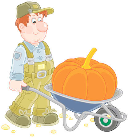 Smiling gardener carrying a big pumpkin in his barrow