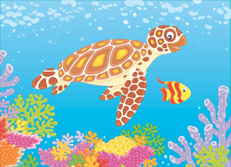 Funny sea loggerhead turtle and a small striped butterfly fish swimming over colorful corals on a reef in a tropical sea, vector illustration in a cartoon style