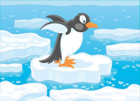 Pinguïn op een ijsschots