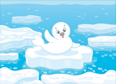 Little whitecoat seal waving his flipper in greeting on a drifting ice floe in a polar sea, vector illustration Banque d'images - 102059343