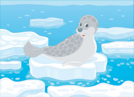 Spotted gray seal on a drifting ice floe in a polar sea, vector illustration in a cartoon style Banque d'images - 103082215