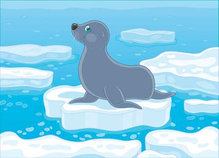 Gray seal on a drifting ice floe in a polar sea, vector illustration in a cartoon style Illustration