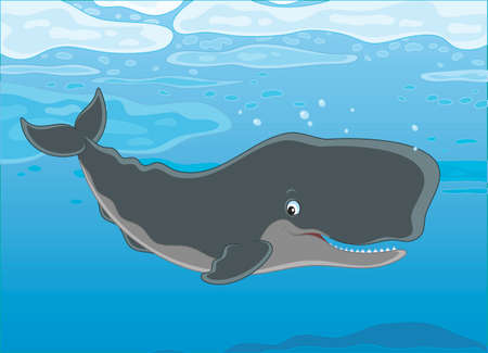 Cachalot swimming under ice floes in blue water, vector illustration