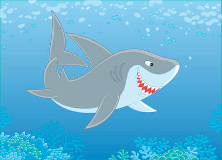 Grey reef shark swimming over a coral reef in blue water of a tropical sea, vector illustration in a cartoon style Illustration