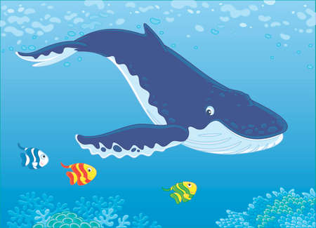 Hump-backed whale swimming in blue water near a reef, vector illustration