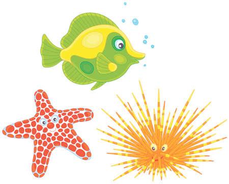 Erizo de mar de espina larga, una estrella de mar manchada y un pez de coral tropical, ilustraciones vectoriales en un estilo de dibujos animados