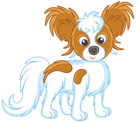 Small funny dog Papillon friendly smiling vector illustration