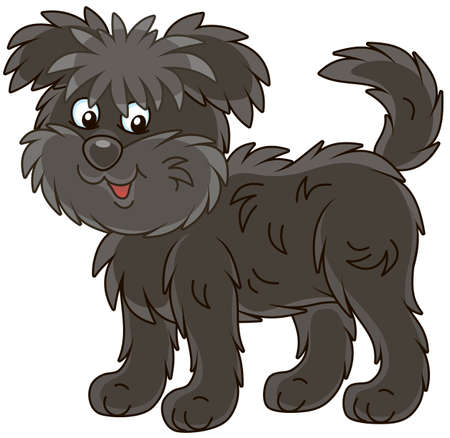 Funny and shaggy dog Affenpincher friendly smiling, vector illustration in a cartoon style