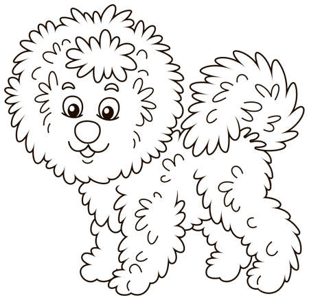 Little curly Bichon Frise lap-dog friendly smiling, black and white vector illustration in a cartoon style for a coloring book