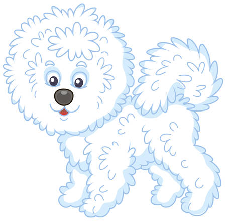 Little funny Bichon Frise lap-dog with long white hair, vector illustration in a cartoon style