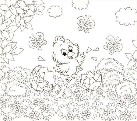 Happy just hatched little chick dancing over shells of a colored Easter egg on grass among flowers on a sunny spring day, black and white vector illustration in a cartoon style for a coloring book Vector Illustration