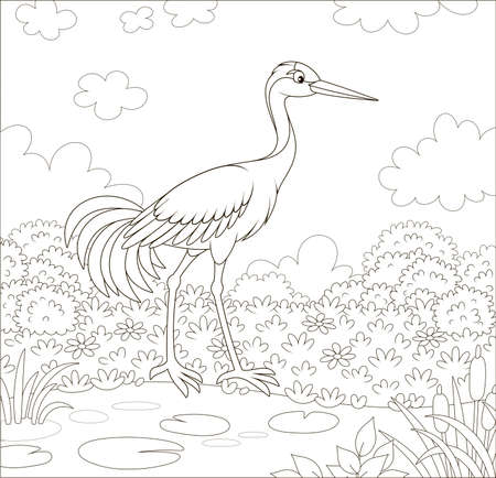 Red-crowned crane bird by a small lake among cane, grass and flowers of a meadow on a summer day, black and white  illustration in a cartoon style Illustration