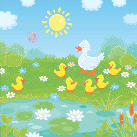 White duck with her little yellow ducklings walking on green grass among flowers near a small pond with water lilies of a summer meadow on a sunny day, vector illustration in a cartoon style
