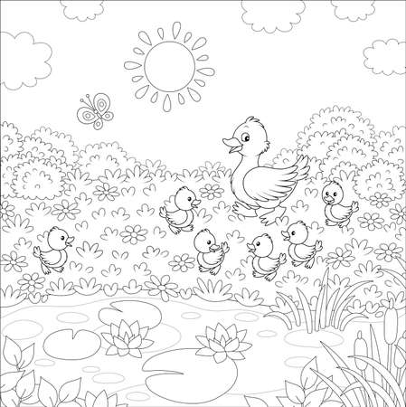 Duck with her little ducklings walking on grass among flowers near a small pond with water lilies of a summer meadow on a sunny day, black and white vector illustration in a cartoon style