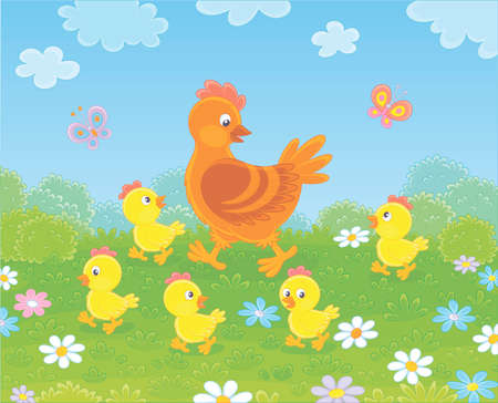 Brown hen with little yellow chicks walking on green grass among flowers on a summer meadow on a sunny day, vector illustration in a cartoon style