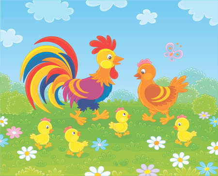 Family of a brightly colored rooster, a cute hen and little yellow chicks walking among flowers on green grass of a summer field, vector illustration in a cartoon style