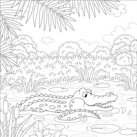 Big crocodile swimming in water of a lake under palm branches in tropical jungle, black and white vector illustration in a cartoon style for a coloring book 向量圖像