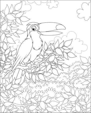 Toucan with a funny beak perched on a tree branch in tropical jungle on a sunny summer day, black and white vector illustrations in a cartoon style for a coloring book Illustration