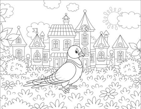 Pigeon walking on grass of a summer town park on a sunny warm day, black and white vector illustration in a cartoon style for a coloring book