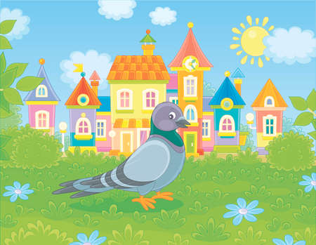 Grey pigeon walking on green grass of a summer town park on a sunny warm day, vector illustration in a cartoon style