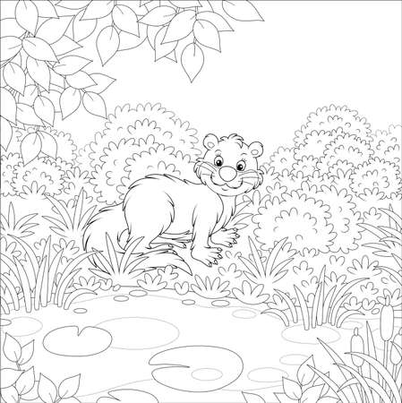 River otter in grass by a small lake in a wild forest on a summer day, black and white vector illustration in a cartoon style for a coloring book