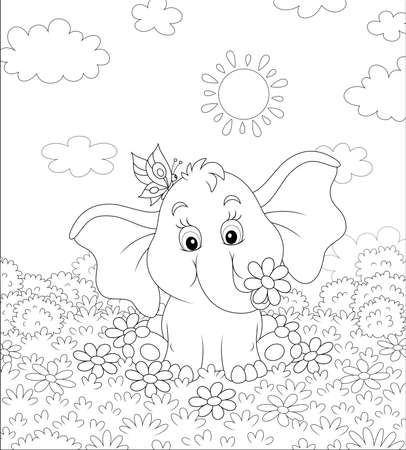 Little elephant playing with a funny butterfly on grass among flowers on a sunny summer day, black and white vector illustration in a cartoon style for a coloring book Illustration