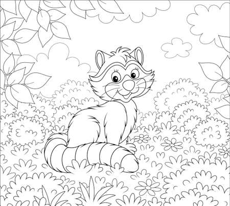 Cute raccoon sitting on grass among bushes and branches of trees on a forest edge on a beautiful summer day, black and white vector illustration in a cartoon style