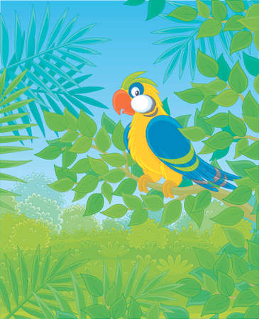 Funny colorful parrot perched on a green tree branch in tropical jungle, vector illustrations in a cartoon style