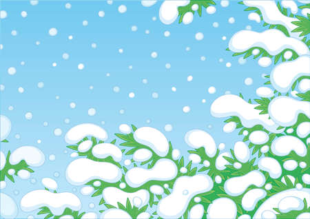 Snow-covered green fir-tree branches on a snowy and frosty winter day, vector cartoon illustration Ilustracja