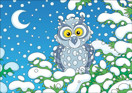 Grey owl perched on a snow-covered branch of a green fir in a winter forest on a cold and snowy moonlit night, vector cartoon illustration Stock Illustratie