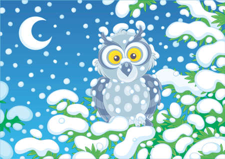 Grey owl perched on a snow-covered branch of a green fir in a winter forest on a cold and snowy moonlit night, vector cartoon illustration Illustration