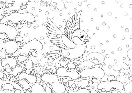 Bullfinch flying over snow-covered branches of a fir in a winter forest on a beautiful snowy day, black and white vector cartoon illustration
