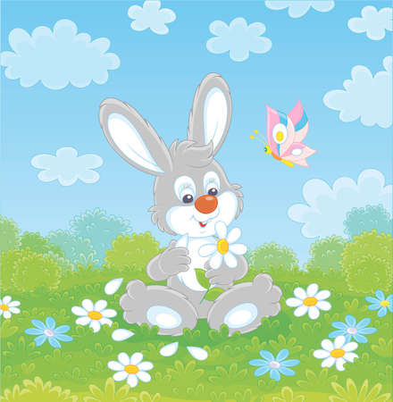 Loving little grey bunny and a colorful butterfly dreaming and telling fortunes with a white daisy on green grass of a summer field on a beautiful sunny day, vector cartoon illustration